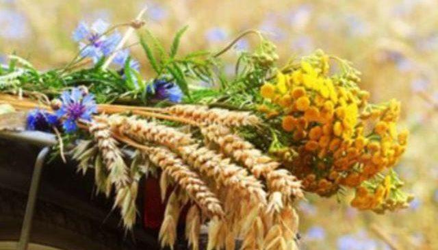 Sveikiname su Žolinių švente